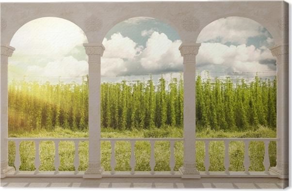 Obraz na płótnie Taras - Plantacja - Tarasy