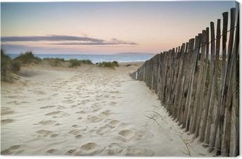 Obraz na Płótnie Trawiaste wydmy krajobraz o wschodzie słońca