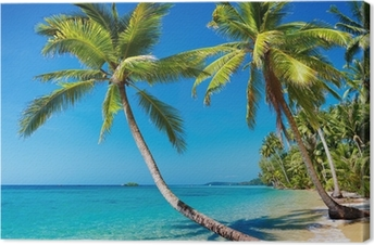 Obraz na płótnie Tropikalna plaża, Tajlandia