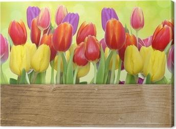Obraz na płótnie Tulipany z panelu drewniane