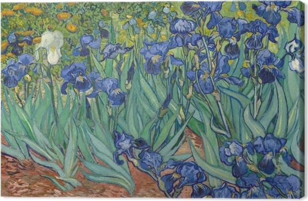 Obraz na płótnie Vincent van Gogh - Irysy - Reproductions