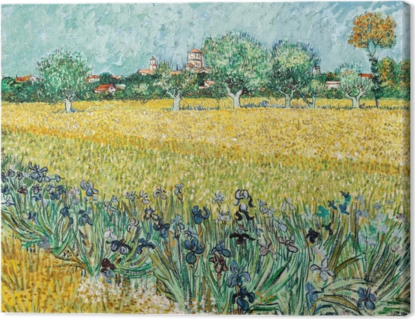 Obraz na płótnie Vincent van Gogh - Widok na Arles z irysami na pierwszym planie - Reproductions