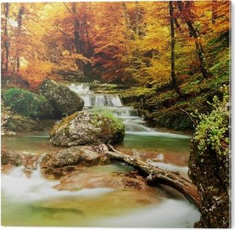 Obraz na PVC Podzimní potok lesy s žlutými stromy