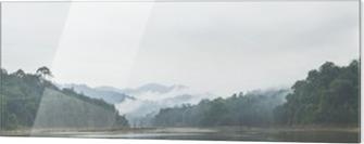 Obraz na szkle Panorama w porannej mgle i martwych drzew w gęstych tropikalnych, Perak, Malezja