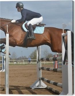 Obrazy premium Jump horse