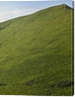 Obrazy premium Panoramic green mountain Bieszczady