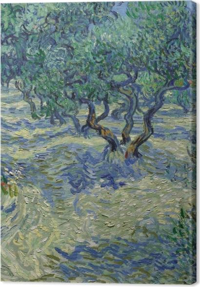 Obrazy premium Vincent van Gogh - Gaj oliwny - Reproductions