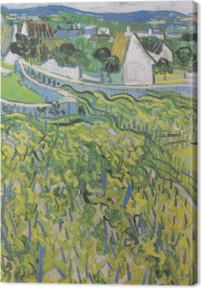 Obrazy premium Vincent van Gogh - Winnice w Auvers - Reproductions