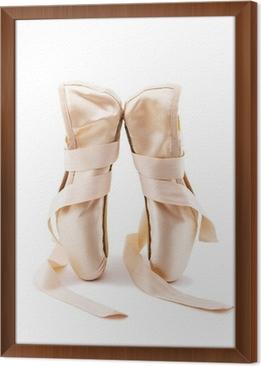 6101f2c5510 Fototapeta Baletní boty 2 • Pixers® • Žijeme pro změnu