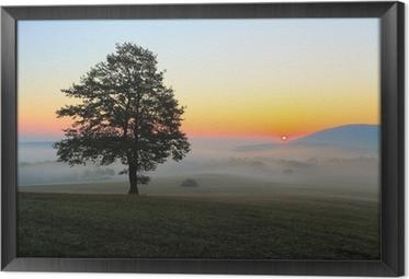 Obraz v Rámu Strom na louce