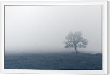Obraz na płótnie w ramie Samotne drzewo w mgle