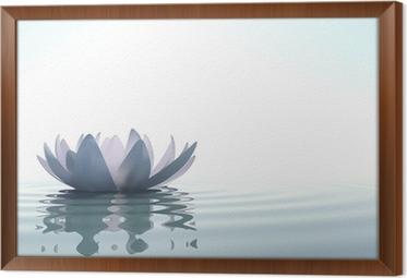 Obraz na płótnie w ramie Zen kwiat loto w wodzie