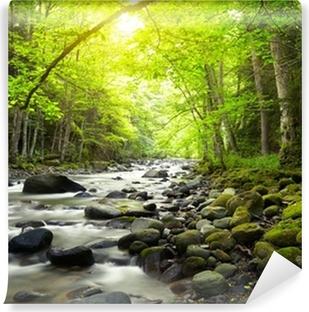 Omyvatelná Fototapeta Horská řeka v lese
