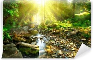 Omyvatelná Fototapeta Horské řeky. Poklidné krajina uprostřed zeleného lesa