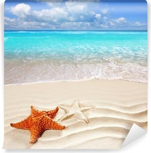 Omyvatelná Fototapeta Karibské tropické pláže s bílým pískem hvězdice shell