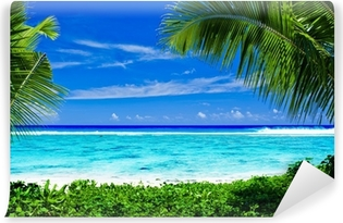 Omyvatelná Fototapeta Opuštěné tropické pláže orámované palmami