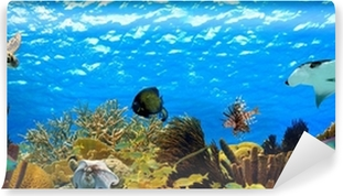 Omyvatelná Fototapeta Podvodní panorama tropické útesu v Karibiku