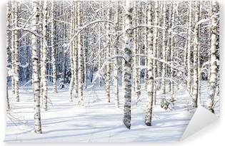 Omyvatelná Fototapeta Snowy bříza kufry
