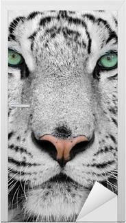 Valkoinen tiikeri Ovitarra