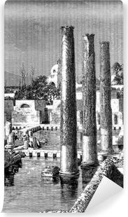 Papier peint vinyle Antiquités - Ruines - Temple: Jupiter Sérapis - Naples