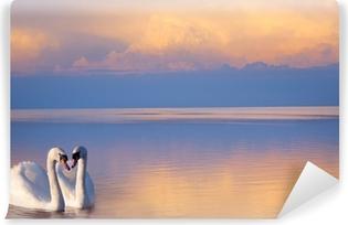 Papier peint vinyle Art beau Deux cygnes blancs sur un lac