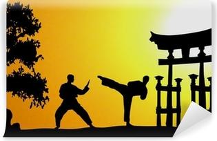 Papier peint vinyle Arts martiaux Asie