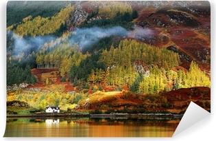 Papier Peint Autocollant Couleurs d'automne à Highlands, en Écosse, en Europe