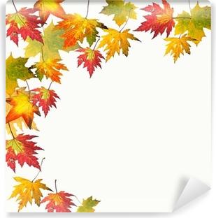 Papier Peint Autocollant Couleurs d'automne: feuilles d'érable colorées