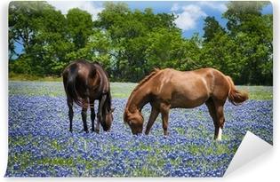 Papier peint autocollant Deux chevaux paissent dans les pâturages bluebonnet au Texas printemps