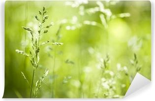Papier Peint Autocollant Juin herbe verte floraison