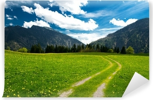 Papier Peint Autocollant Pâturage dans les Alpes bavaroises