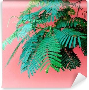 Papier Peint Autocollant Plantes sur concept minimal rose. vert tropical sur fond de mur rose.
