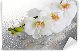 Papier peint vinyle Belles orchidées blanches avec des gouttes
