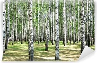 Papier Peint Vinyle Birches