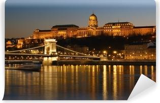 Papier peint vinyle Budapest la nuit.