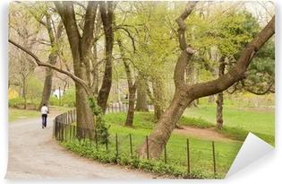 Papier peint vinyle Central Park