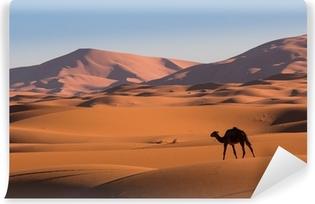 Papier peint vinyle Chameau dans le désert du Sahara, le Maroc