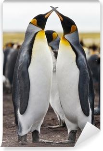 Papier peint vinyle Couple King Penguins