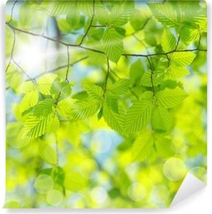 Papier peint vinyle Feuilles vertes