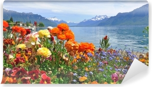 Papier peint vinyle Fleurs de printemps en fleurs