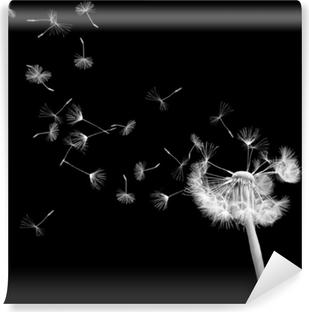 Papiers Peints Fleurs Sur Fond Noir Pixers Nous Vivons Pour Changer