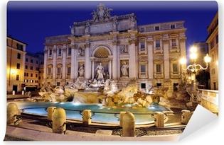 Papier peint vinyle Fontaine de Trevi, Rome