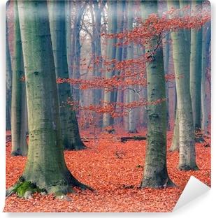Papier peint vinyle Forêt d'automne brumeux
