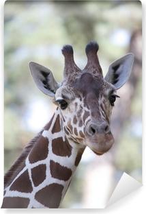 Papier peint vinyle Girafe