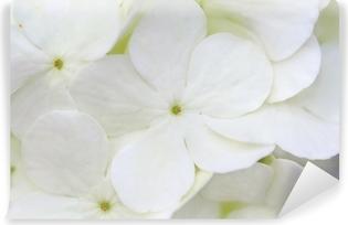 Papier peint vinyle Hortensia blanc