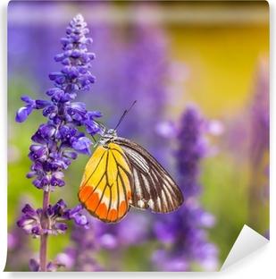 Papier peint vinyle Insectes et des fleurs