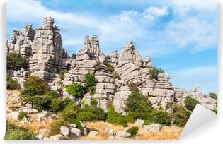 Papier peint vinyle Karst paysage, Torcal Antequera