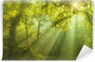 Papier peint vinyle La forêt du paradis
