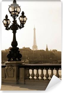 Papier peint vinyle Lampadaire sur le pont d'Alexandre III à Paris, France