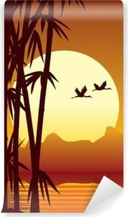 Papier peint lavable Bambou et le coucher du soleil